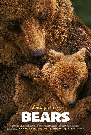 Where to stream Bears