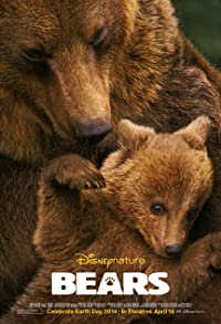 Primary photo for Bears