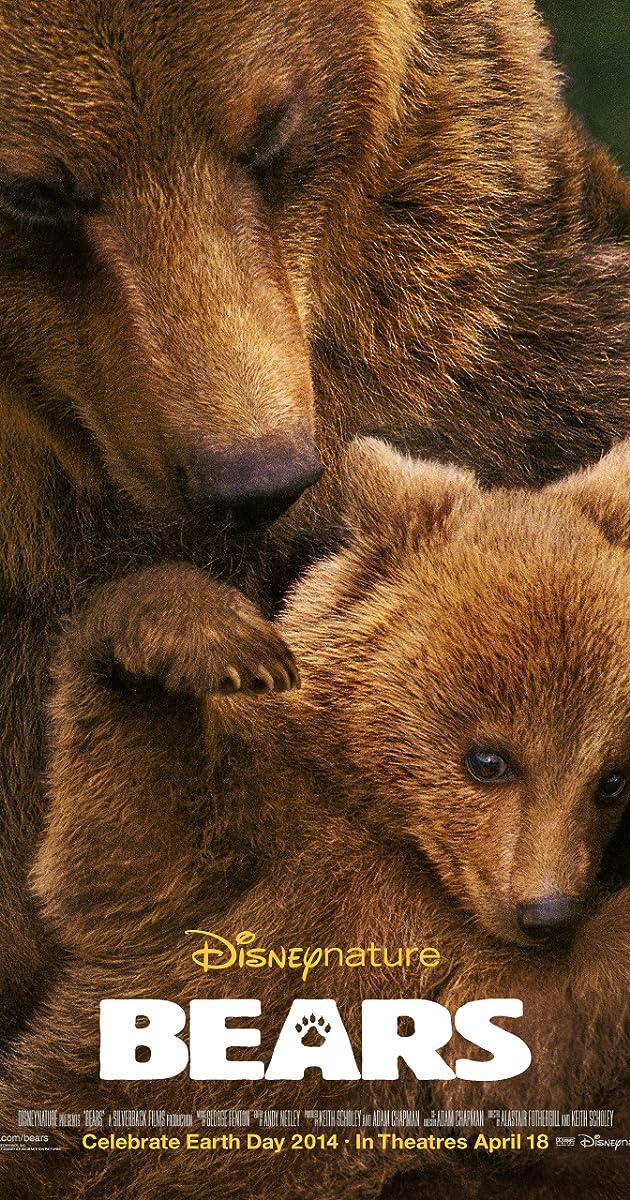 Subtitle of Bears