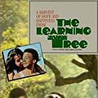 The Learning Tree (1969)