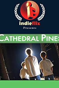 Primary photo for Cathedral Pines