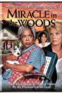 Miracle in the Woods (1997) Poster