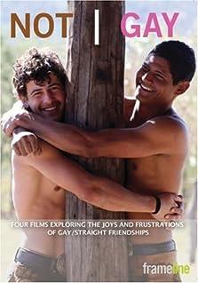 Not Gay (2008)