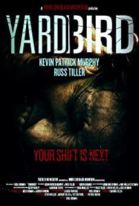 Legal digital movie downloads uk Yardbird USA [Bluray]