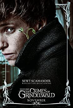 After being captured, powerful dark wizard Gellert Grindelwald escapes custody and sets about gathering followers to raise pure-blood wizards up to rule over all non-magical beings. In an effort to thwart Grindelwald's plans, Albus Dumbledore enlists his former student Newt Scamander, who agrees to help, unaware of the dangers that lie ahead.