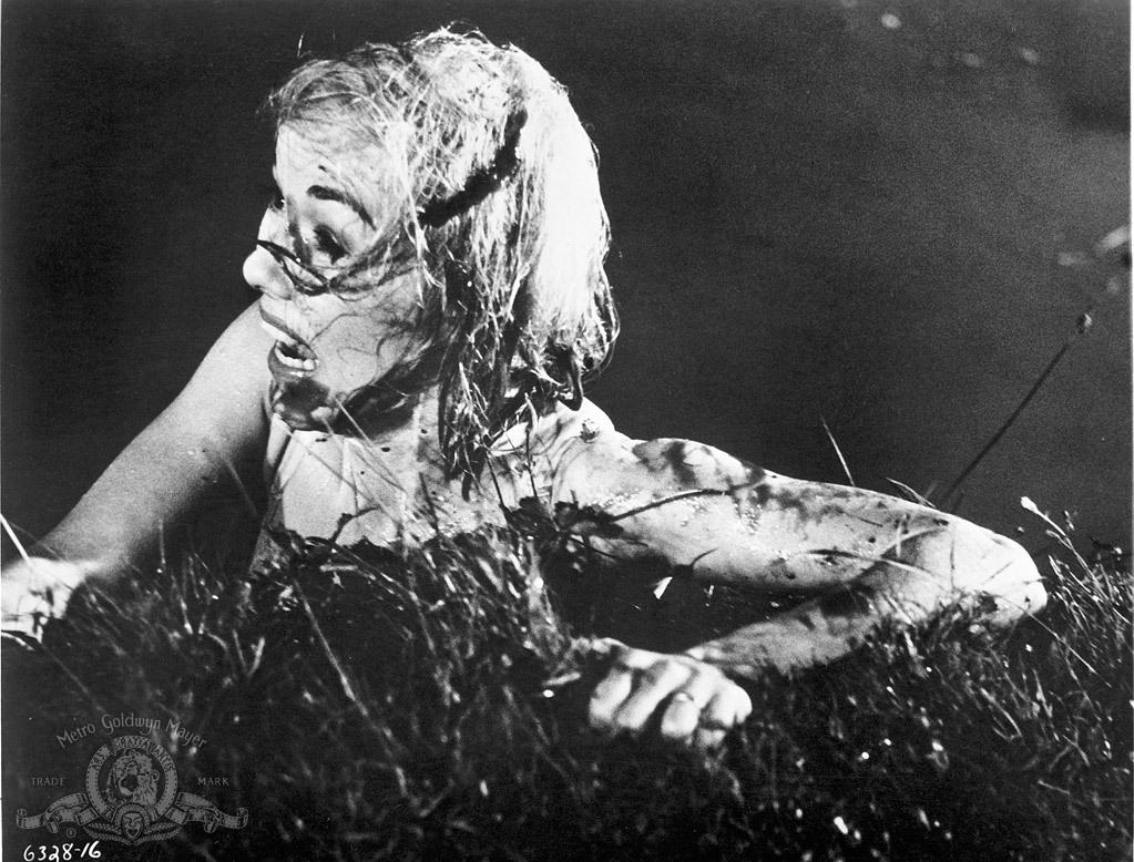 Blythe Duff (born 1962) picture