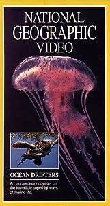 Film wird auf das iPad heruntergeladen Jellies & Other Ocean Drifters [Bluray] [avi] [1680x1050]