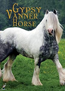 MP4 download full movie The Gypsy Vanner Horse by none [avi]