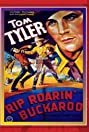 Rip Roarin' Buckaroo (1936) Poster