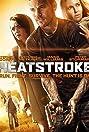 Heatstroke (2013) Poster
