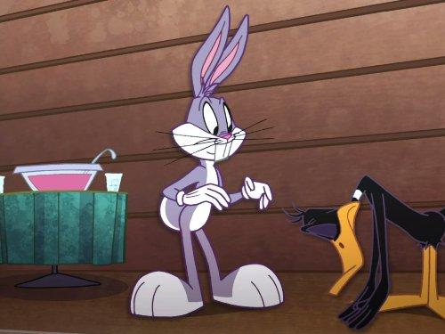 The Looney Tunes Show Reunion Tv Episode 2011 Imdb