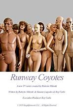 Runway Coyotes