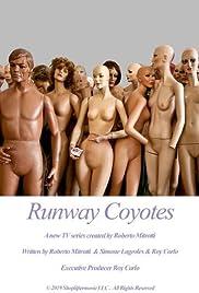 Runway Coyotes Poster
