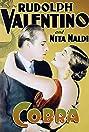 Cobra (1925) Poster