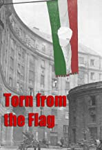 Torn from the Flag: A Film by Klaudia Kovacs
