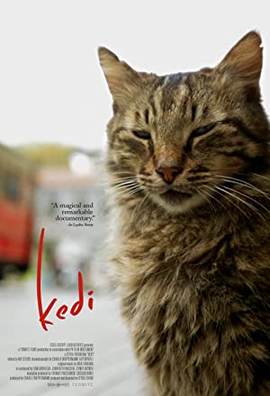Permalink to Movie Kedi (2016)