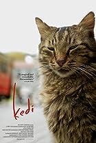 Kedi (2016) Poster