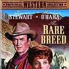 Maureen O'Hara and James Stewart in The Rare Breed (1966)