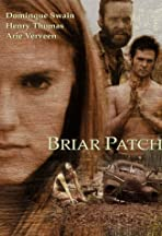 Briar Patch