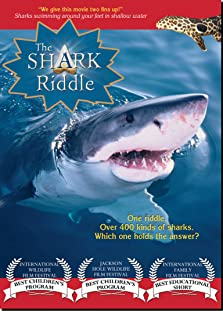 The Shark Riddle (2011 Video)