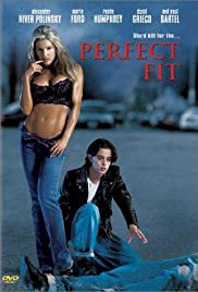 Perfect Fit Poster