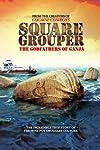 Square Grouper (2011)