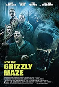Primary photo for Into the Grizzly Maze