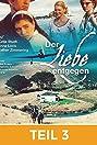 Der Liebe entgegen (2002) Poster