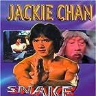 Jackie Chan and Siu-Tin Yuen in Se ying diu sau (1978)