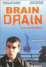 The Brain Drain