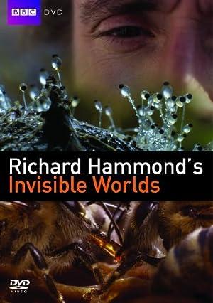 Where to stream Richard Hammond's Invisible Worlds