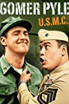Gomer Pyle Star Jim Nabors Dead at 87