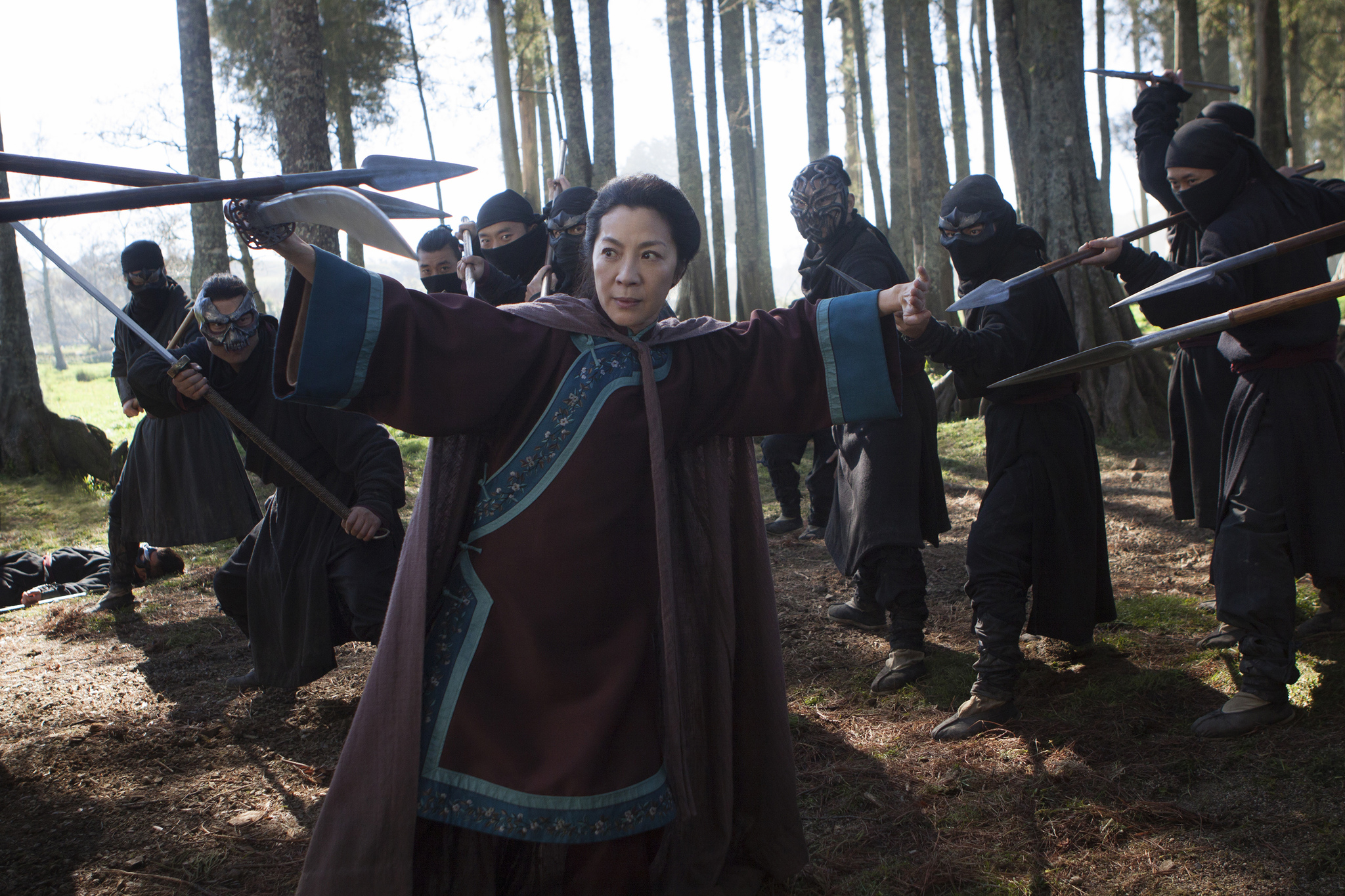 Michelle Yeoh in Crouching Tiger, Hidden Dragon: Sword of Destiny (2016)