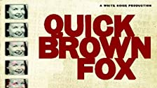 Quick Brown Fox: A Personal Investigation Into the Alzheimer Epidemic