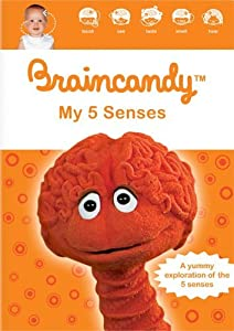 Movie downloads free mp4 for ipod Braincandy: My Five Senses by [UHD]