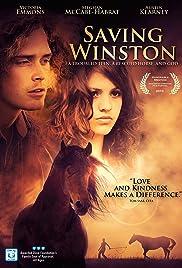 Saving Winston(2011) Poster - Movie Forum, Cast, Reviews