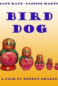 Primary photo for Bird Dog