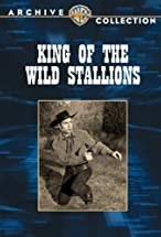 Primary image for King of the Wild Stallions