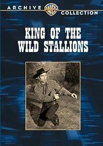 King of the Wild Stallions USA