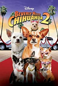 Primary photo for Beverly Hills Chihuahua 2