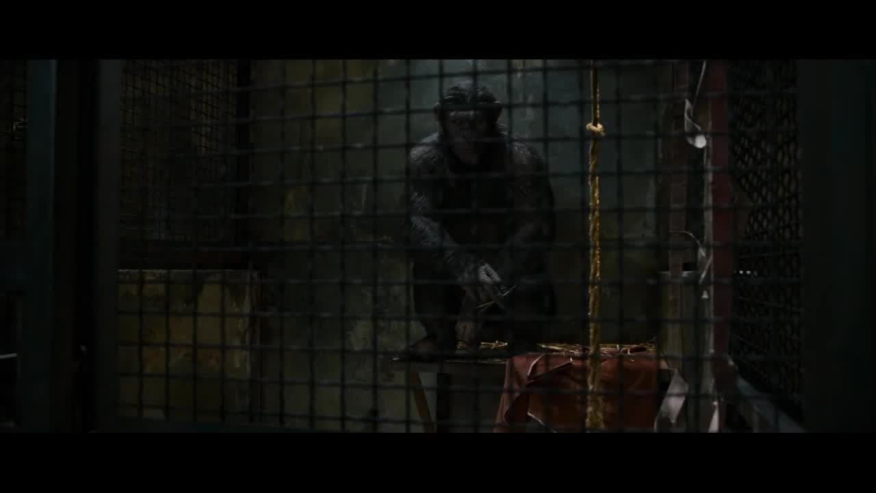 download planet of the apes 2001 in hindi