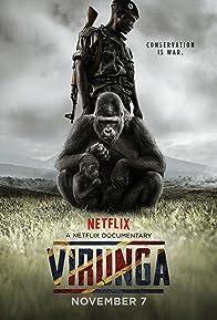 Primary photo for Virunga