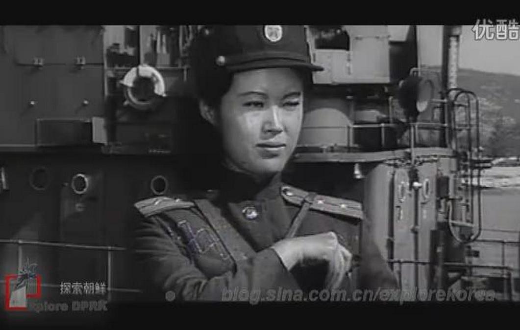Chonggun'gijaui sugi ((1980))