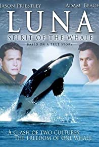 Primary photo for Luna: Spirit of the Whale
