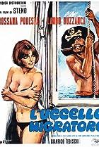 L'uccello migratore (1972) Poster