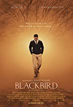 Primary image for Blackbird