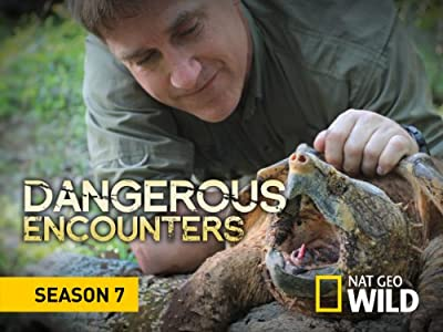 🔶 top hollywood movies 2017 free download dangerous encounters.