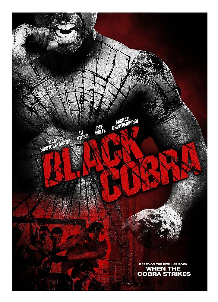 Black Cobra 2012 Hindi Dual Audio 350MB BluRay ESub Download