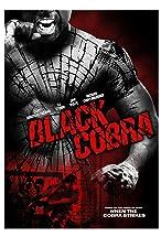 Primary image for Black Cobra