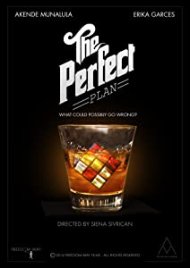 The Perfect Plan movie download